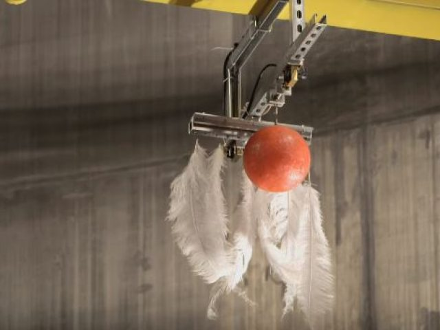 Free fall of bowling ball and a feather in world's biggest vacuum chamber